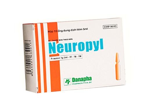 Neuropyl