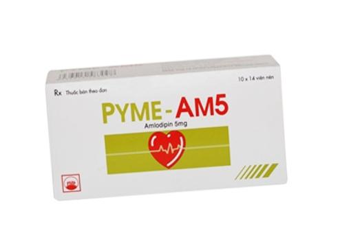 Pyme AM5