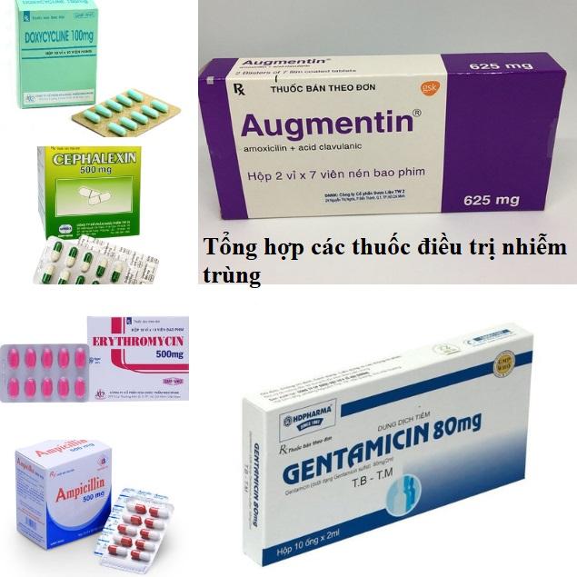 Tổng hợp các thuốc điều trị nhiễm trùng